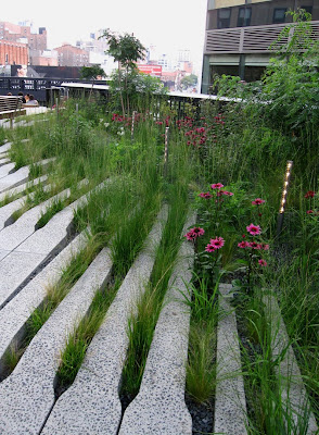 66 square feet plus the highline in late july for Piet oudolf plant list