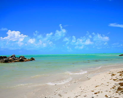 best florida beaches best beaches in florida beaches in florida 415x332