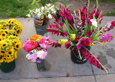 Sunflowers, Zinnias and Gladiolas at the Goderich Farmers Market