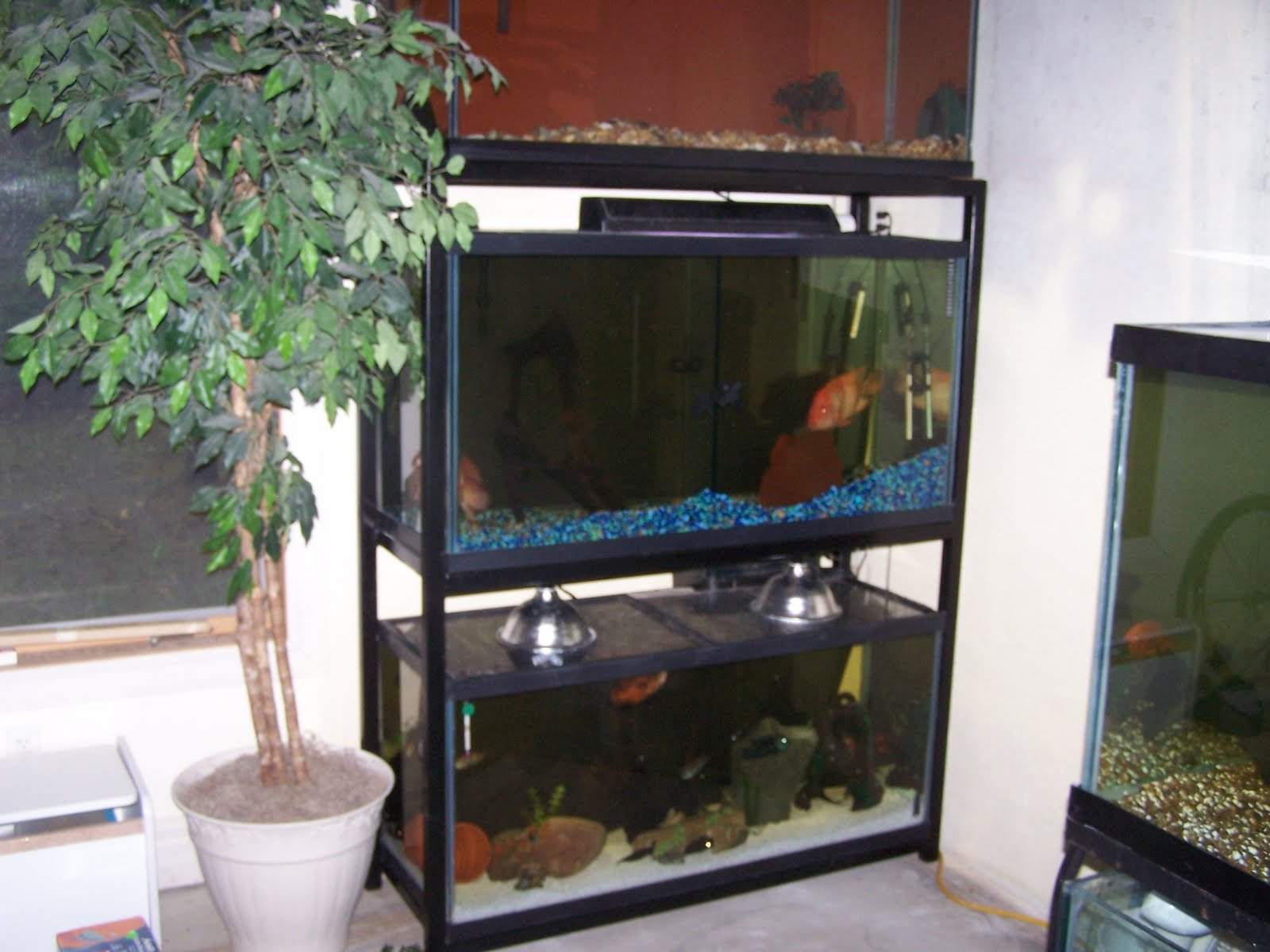 Download how to make a metal fish tank stand plans free for Fish tank table stand