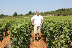Vinmarker i Puligny Montrachet