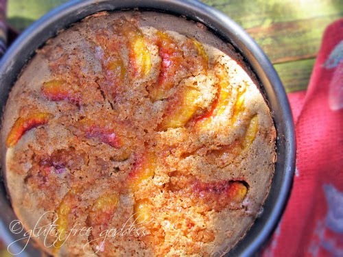 Gluten free peach cake recipe