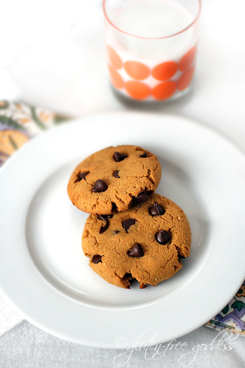 Gluten-free pumpkin chocolate chip cookies... with peanut butter!