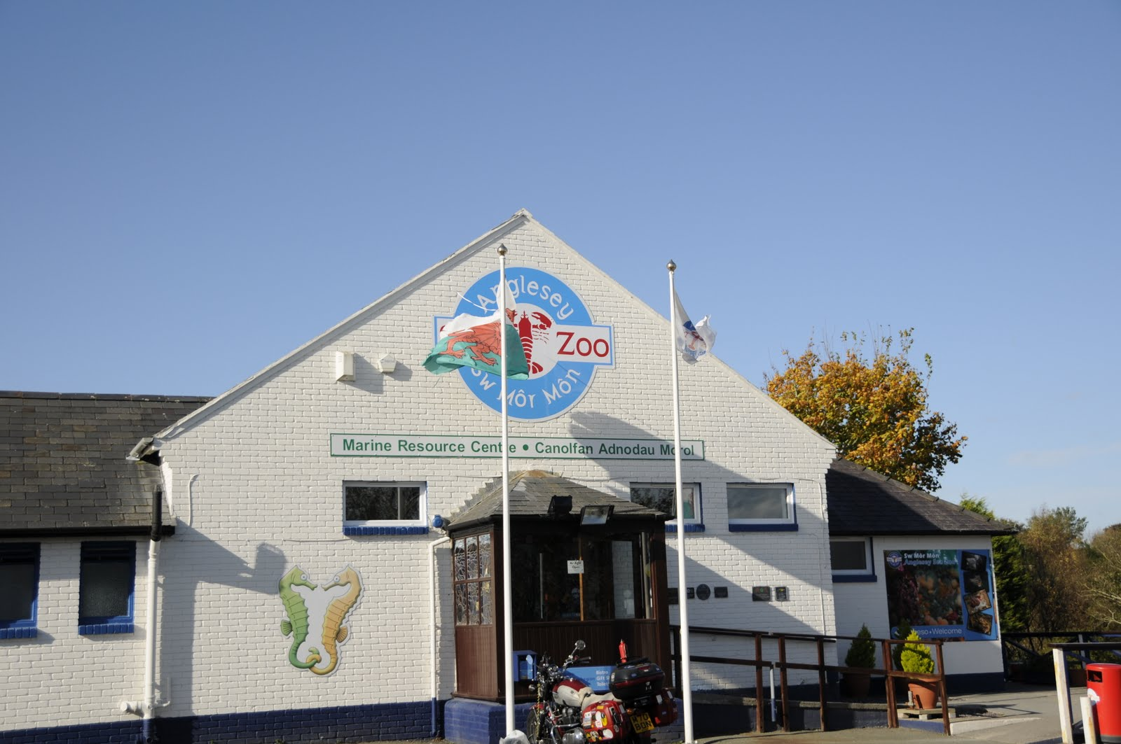 Holidays In Wales: Anglesey Sea Zoo