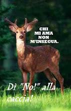 NO alla caccia