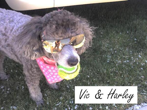 Vic & Harley
