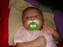 Zafran 3 bulan