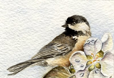 chickadee oil painting