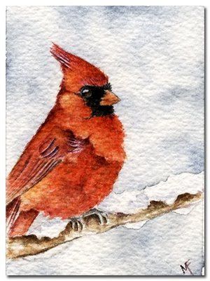 cardinal watercolour painting