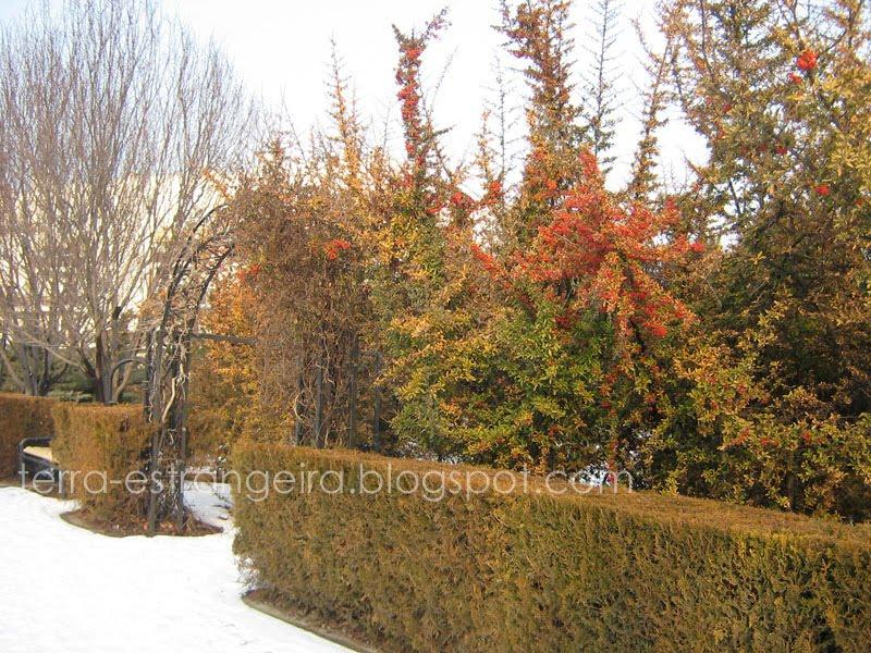 Inverno em Ancara