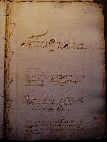 "Manuscrito genealógico ""Família dos Pintos"""
