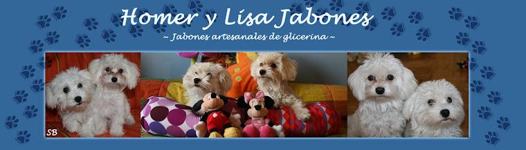Homer y Lisa Jabones