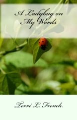 A Ladybug on My  Words