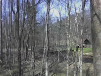 wooded scene, covered bridge, Victor NY jcb 08