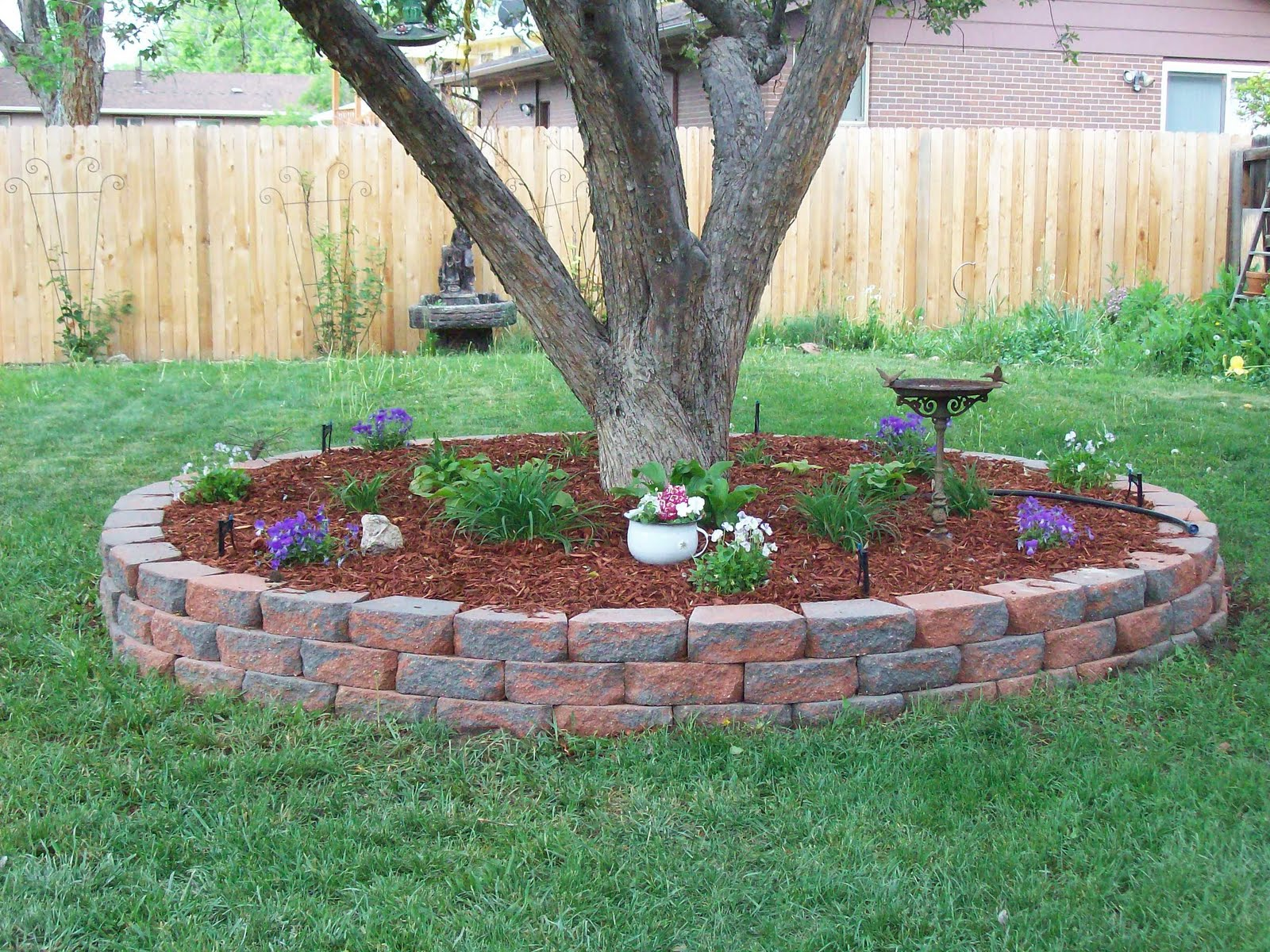 Landscaping Ideas Around Tree Trunks : Porter place cottage backyard photos