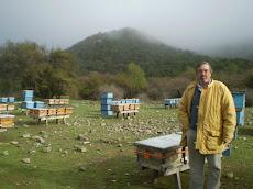 Apicultura en los Valles Cordilleranos