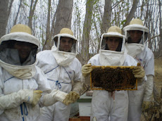 Alumnos de ESAPA en el apiario