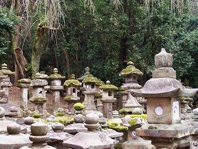 Ein Wald von Steinlaternen