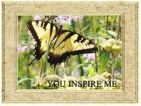 Kiitos Sinikalle tästä perhosesta
