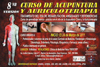 8º VERSION DEL CURSO DE ACUPUNTURA Y AURICULOTERAPIA GESTION 2011