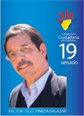 senado 19