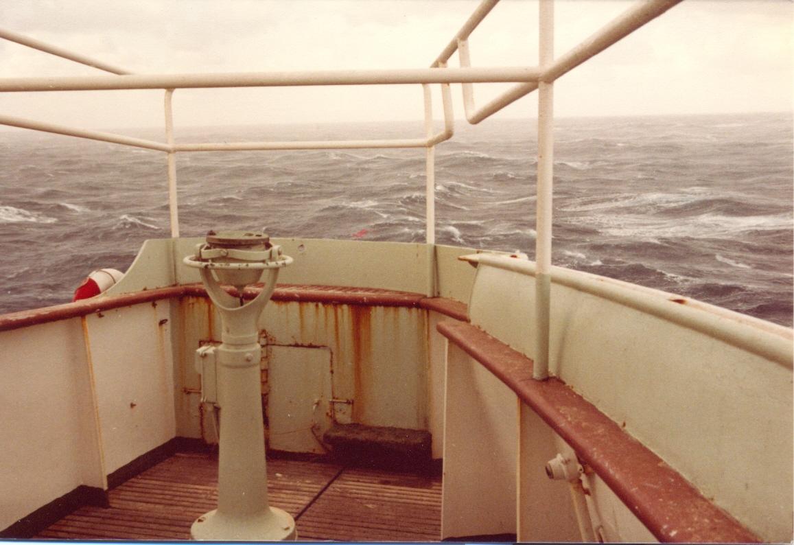 Pagine di mare il tito campanella - Pagine di ringraziamento e divertimento ...