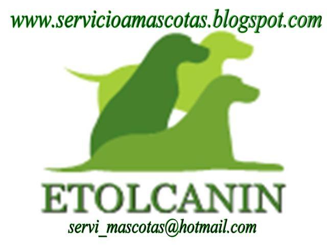 SERVICIO DE ASISTENCIA a MASCOTAS **(SERVICIO DOMICILIARIO)**