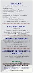 SERVICIOS ETOLCANIN