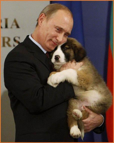 Vladimir Putin Dog Buffy A World View: AWV Awar...