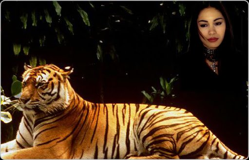 The Lady or the Tiger Study Guide from LitCharts