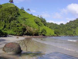 Health Care Bill passes: Rush Limbaugh off to Costa Rica