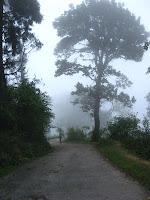 Neora Valley, Loley Gaon