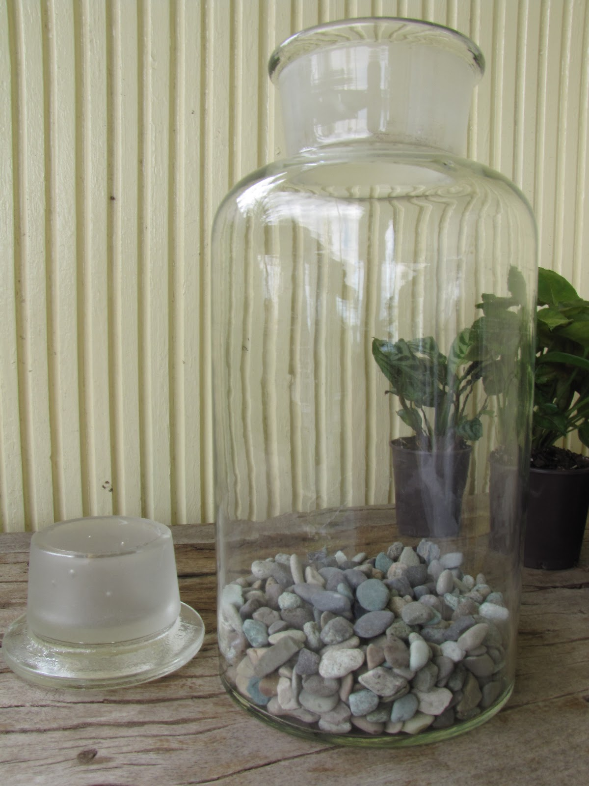 how to make a terrarium with a small opening