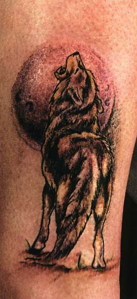 Чаще всего татуировка волка размещают