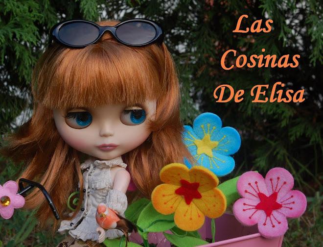 LAS COSINAS DE ELISA