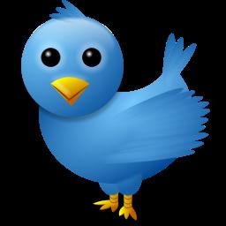 oiseau twitter