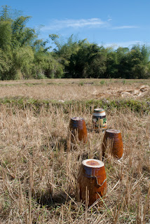 Cambodia - Ratanakiri - Jars for the Rice alcohol done mby minorities, made from rice, paddy