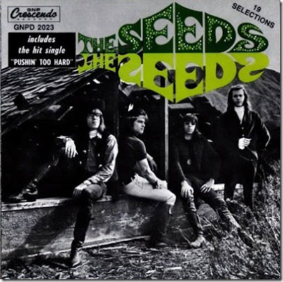 The Seeds - Fallin' Off The Edge Of My Mind