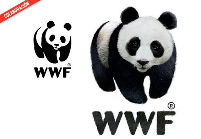 WWF untooned by Rocío García