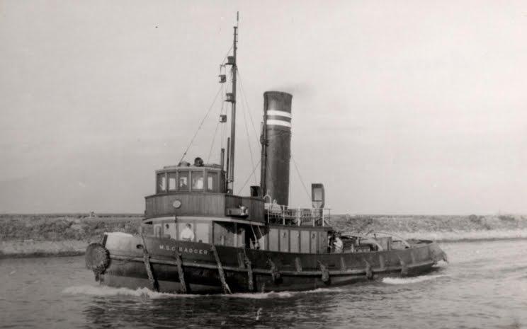 M S C  BADGER  Ship No 290  E Badger Sister Ship