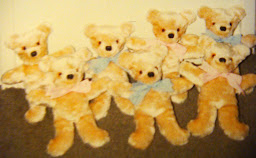 PLUSH TEDDIES