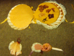 SCALLOP SHELL ALBUMS