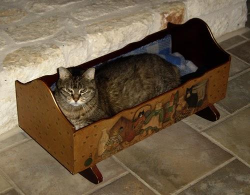 Texas Oasis: Catblogging - cat's cradle and silver spoon