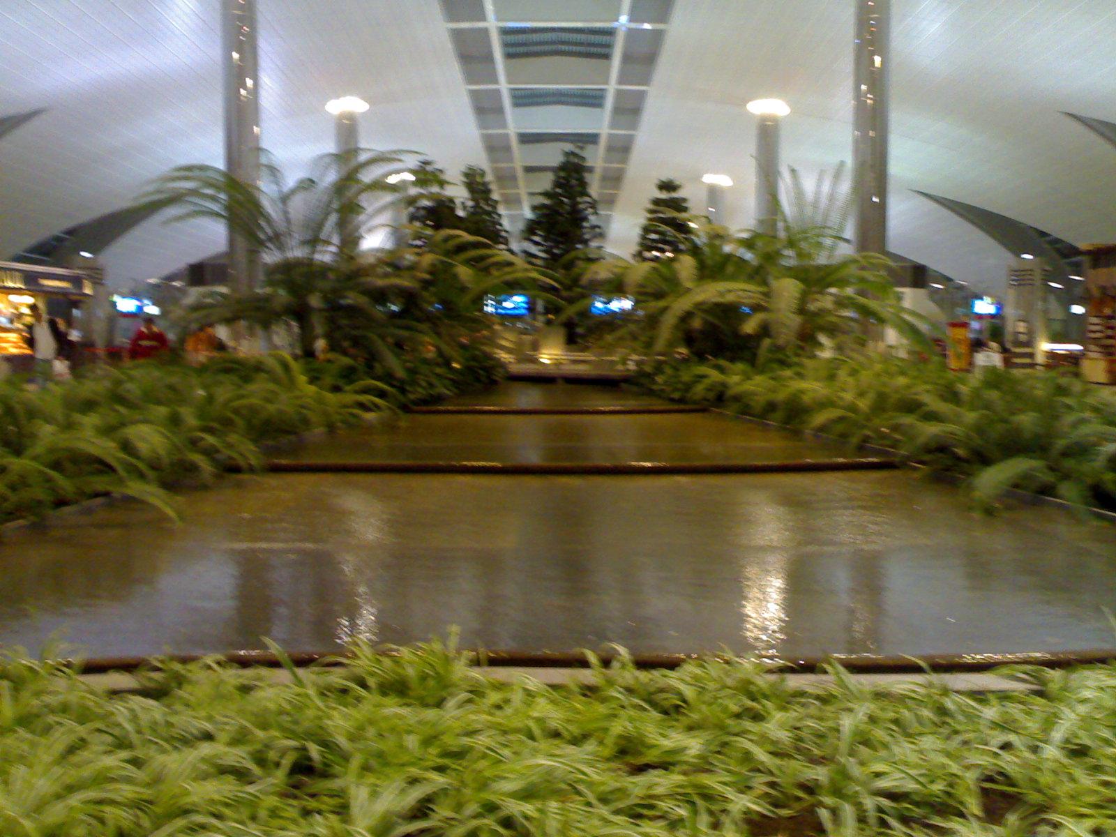Sanabis (Bahrain) Daily Photo: Indoor Garden at Terminal 3 Dubai Airport