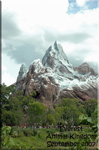 Everest at Animal Kingdom