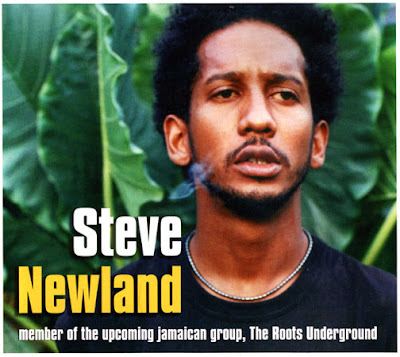 steve newland