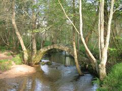 Claroscuros envolvendo a Ponte Romana de Xuño.