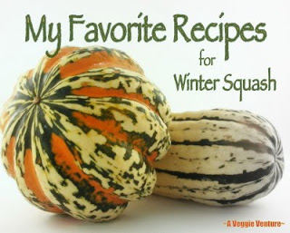 A Veggie Venture's favorite recipes for winter squash, mostly butternut squash!