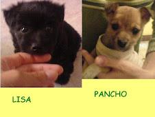 LISA Y PANCHO