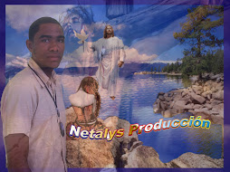 Netalys Produccion